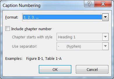 Caption Numberingh